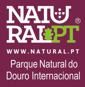 logo_douroint